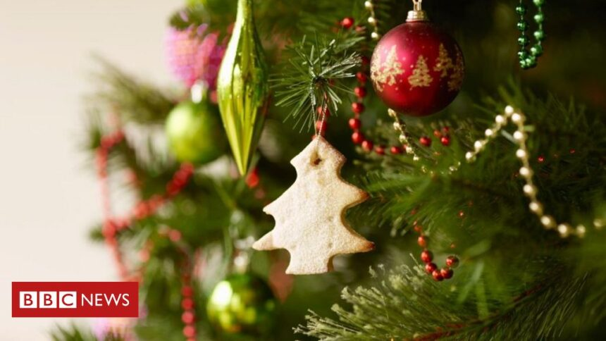 Covid-19: Call for urgent executive meeting over Christmas rule changes