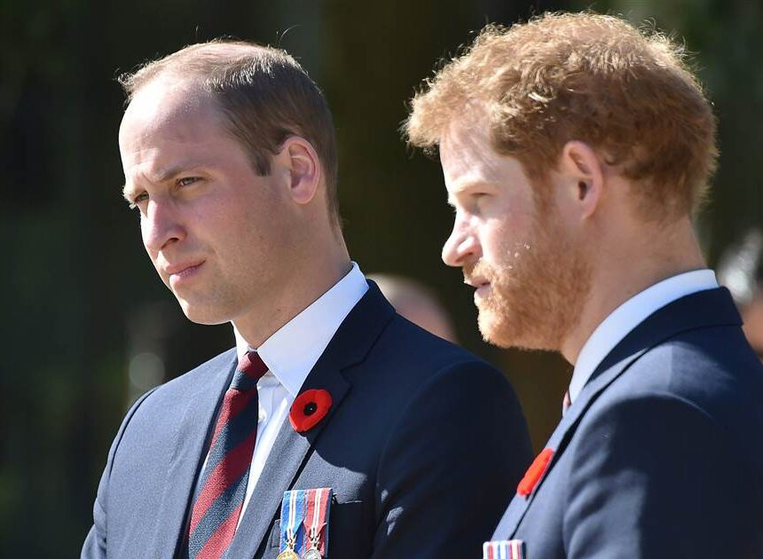 Princes William and Harry pay tribute to Philip in separate statements