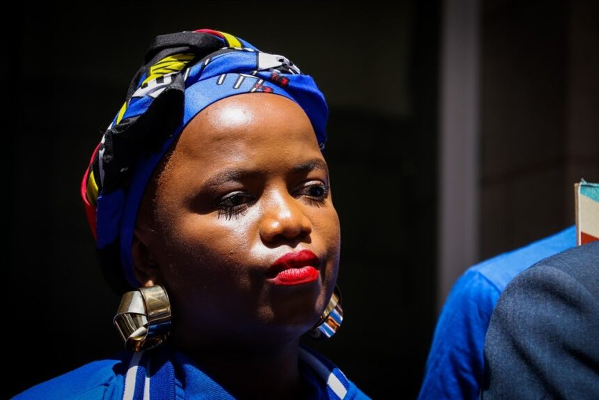 Phumzile van Damme on DA resignation: 'I leave on my own terms'
