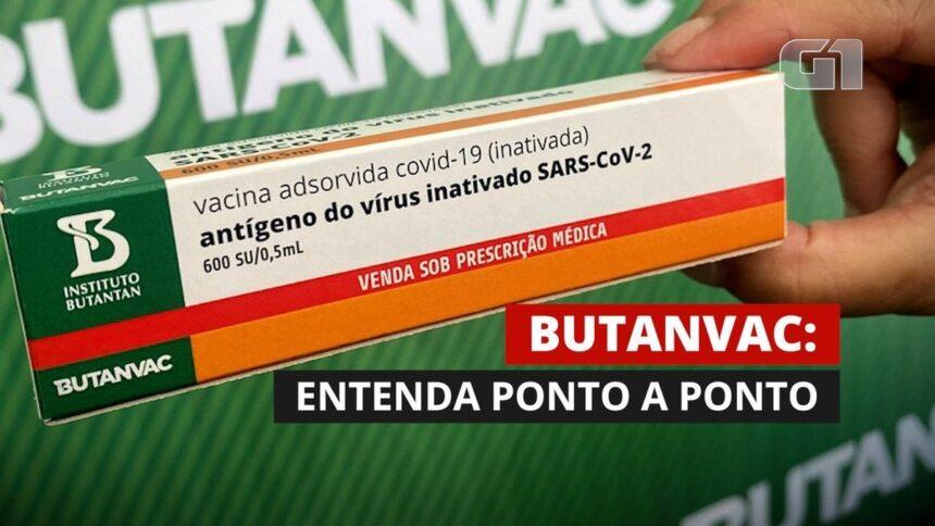 Testes da ButanVac são autorizados pela Anvisa; candidata à vacina contra a Covid aposta em 'cultivo em ovo'