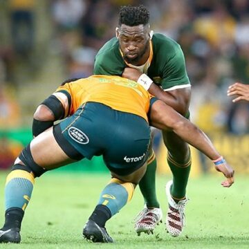 Woeful Springboks dish up Brisbane shocker as Rugby Championship charge fades
