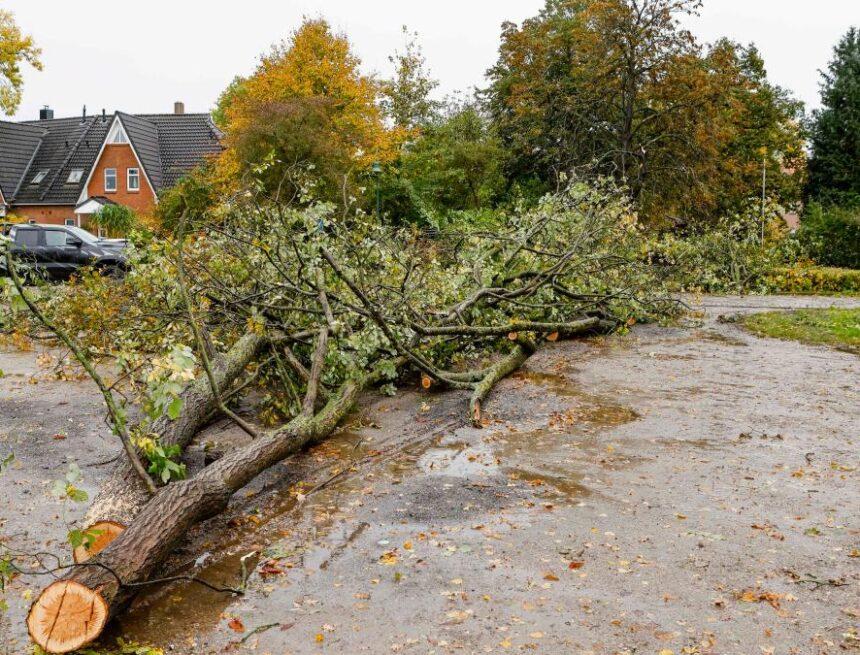 Sturm Ignatz: Zugausfälle bei der Bahn, Orkanböen und Tornado-Warnung